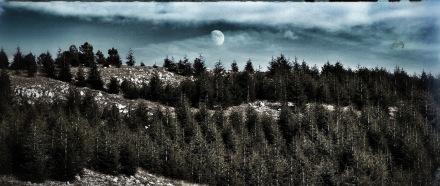 La luna appena sorta danzava